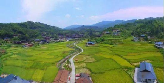 微洪江|洪江市这2个村将获得中央财政支持!