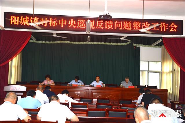 西峡县阳城镇:对标中央要求 全力以赴抓好扶贫整改工作