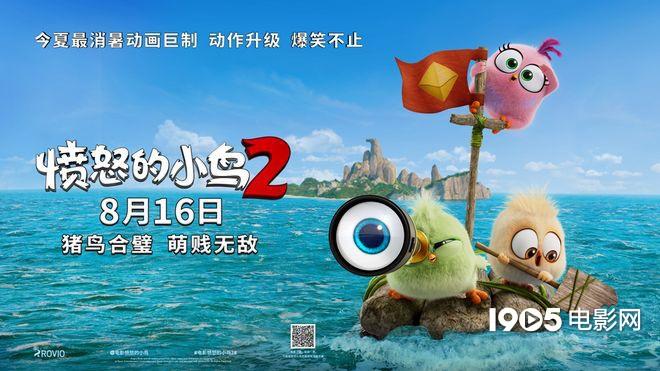 """萌鸟憨猪联手 《愤怒的小鸟2》曝""""萌贱""""预告片"""