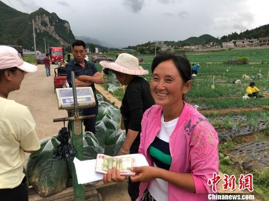 贵州赫章蔬菜抢滩海内外市场