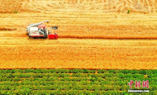 中国农村居民人均可支配收入70年间实增40倍