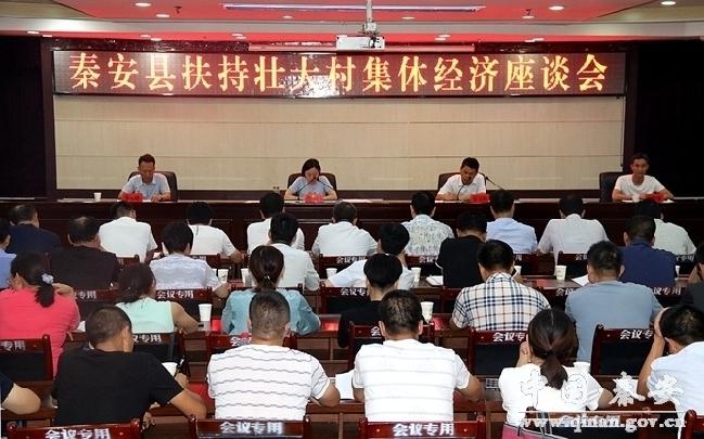 秦安县召开扶持壮大村集体经济工作座谈会