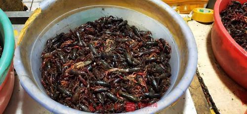 洁厕液、草酸清洗小龙虾?昆明市场是否也这样?