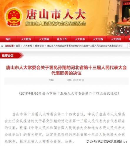 80后百亿富豪孙翔遭举报双重国籍 人大代表职务被罢免