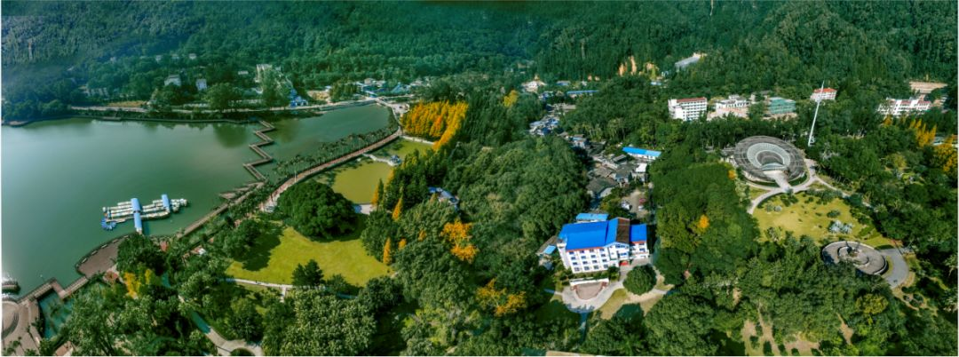 """升级""""榕树王"""",打造缤纷花境……福州这个公园即将迎来大变样!"""