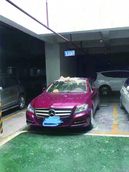 <b>一袋垃圾砸伤两车致损失5万余元 车主向物业索赔被拒</b>