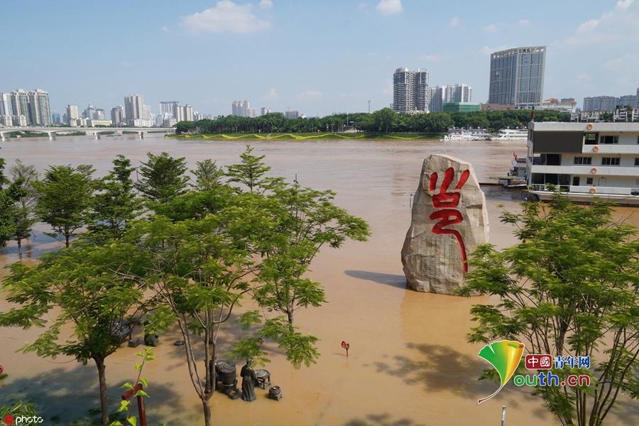 广西南宁城区迎来邕江今年最大洪水 部分景观带被淹