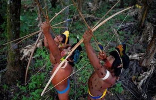 南美一民族5万人从未讲过话,日常靠吃毒蛇生活,能直接生吃毒腺