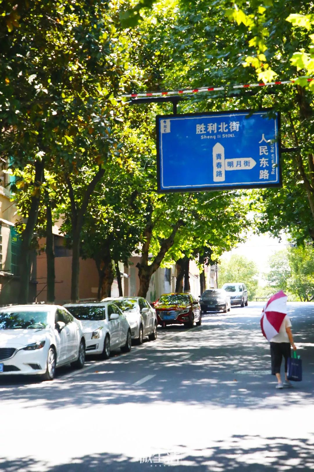 金华这家开了二十多年的山东水饺,每到饭点座无虚席...