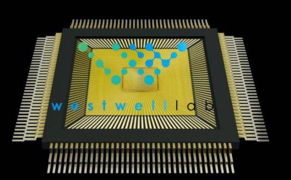 """施路平团队研发的类脑计算芯片""""天机芯"""",登上《Nature》封面"""