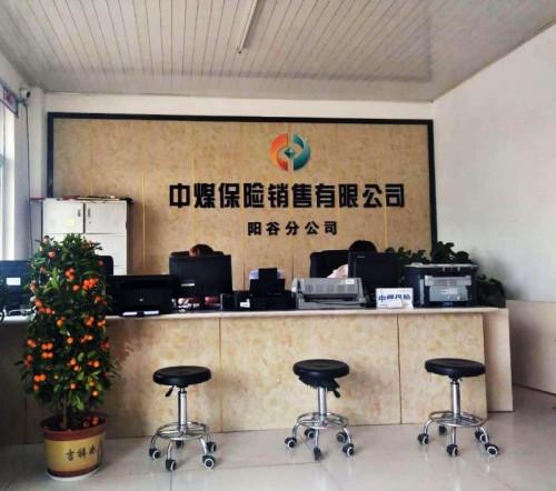 """阳谷大胡子商贸有限公司正式启用中文域名:""""中国保险网平台.网址"""""""