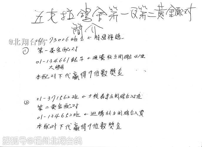 台湾赛鸽名家| 五克拉鸽舍 廖添郎