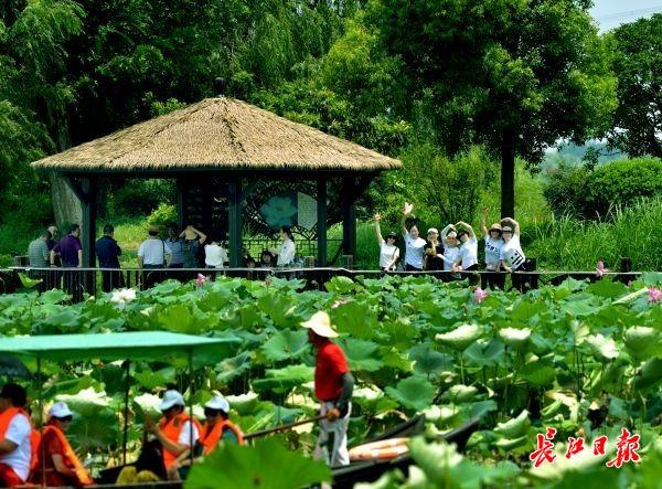 武汉这个旅游节已有5万人抢到票,首批免费门票9日起能用
