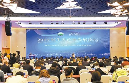 2019牦牛乳产业发展论坛在甘南举行