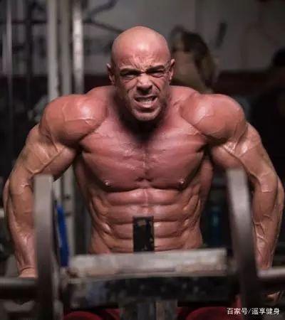 体 脂肪 率 力士 【体重158kgの力士の初速が短距離王者ボルトより速い!?】力士とデブの違いとは
