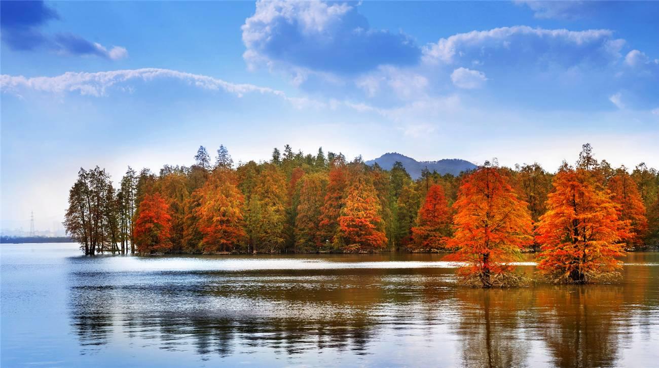 秋高气爽 去临安体验不一样的文化之旅