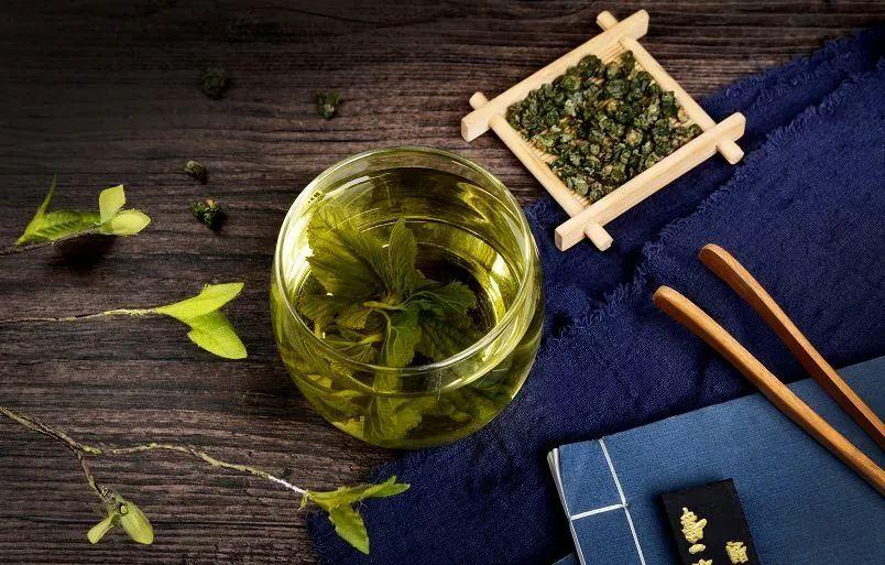 不同体质应该喝什么茶