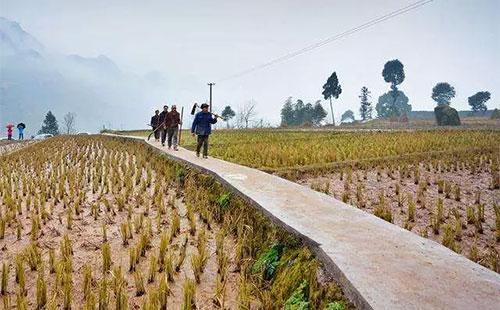 9月1日起,农村又迎来新的福利了,事关7.6亿人未来的生活!