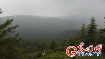 旅游产业续写苏木山人工林场绿色传奇