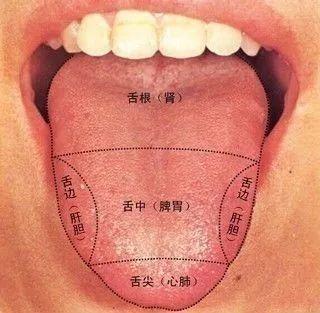 咬咬舌头,竟然能治这么多的病!太神奇了~~