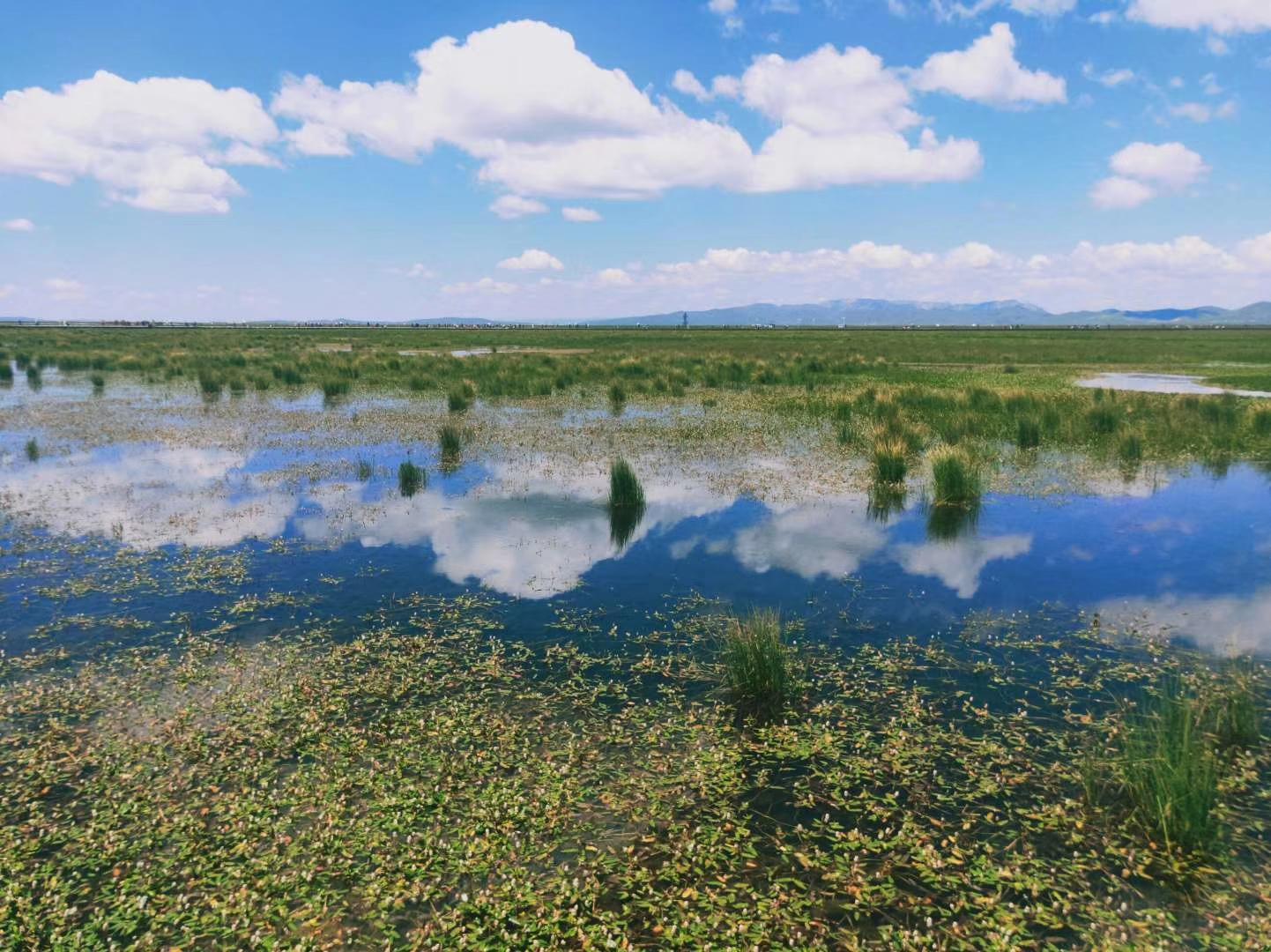 大草原上的天然海子,超塵脫俗的圣境天堂