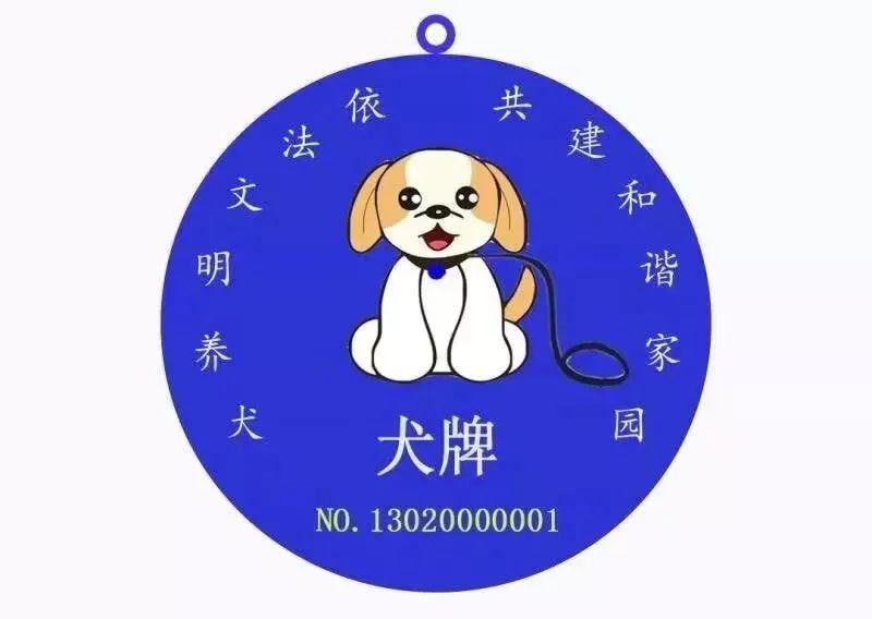 狗狗也有了身份证!快来看如何办理吧