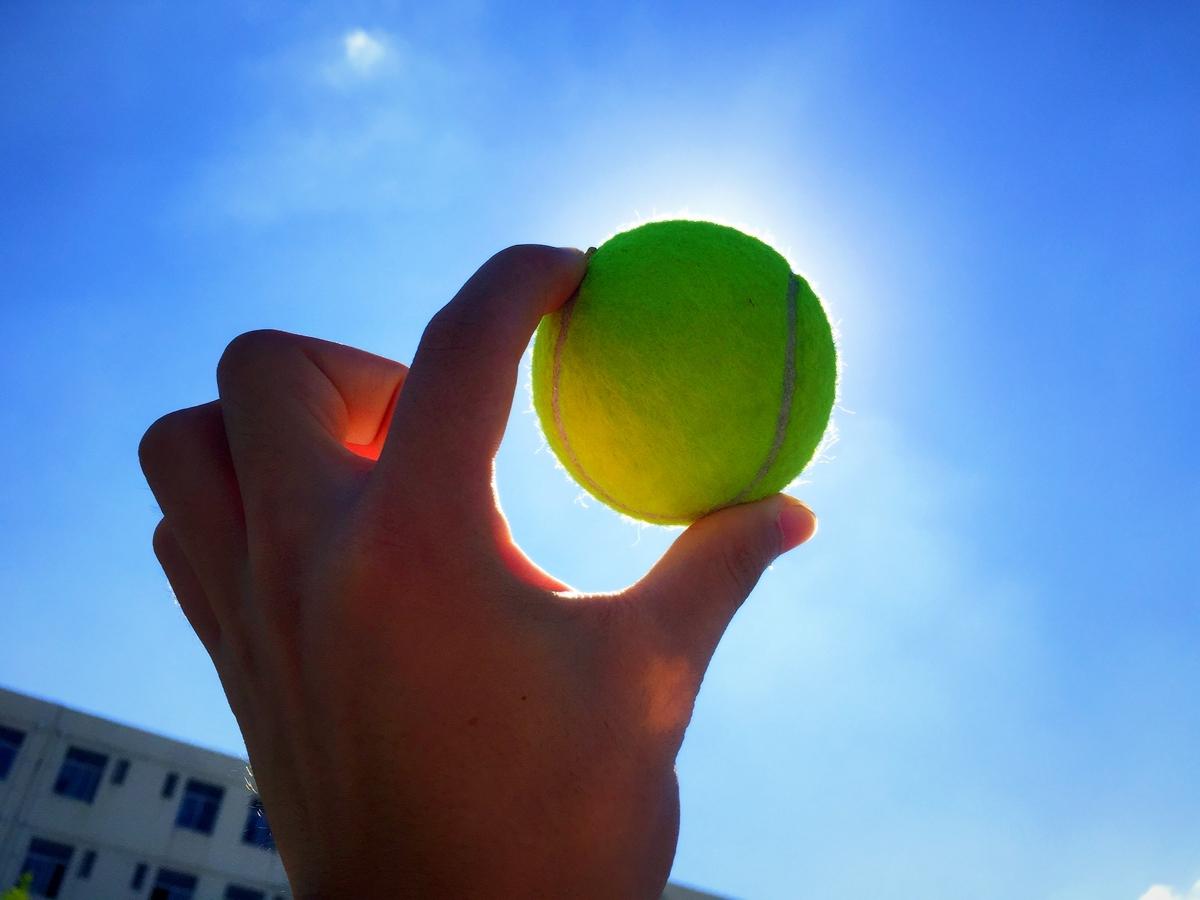最赚钱女运动员,前十都打网球