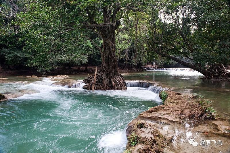 泰国又有好去处,国家公园再增22个!森林覆盖率高达55%