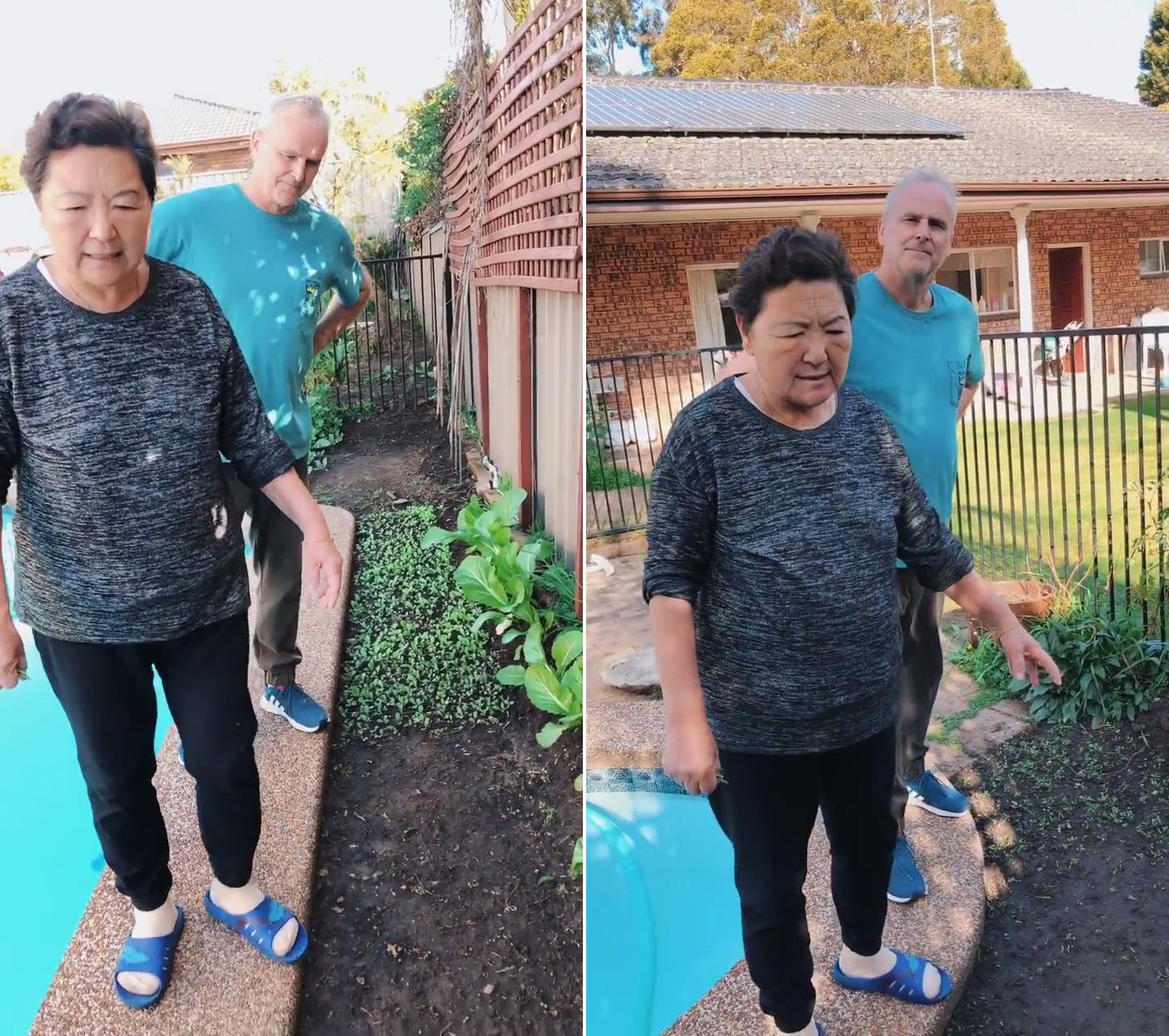 """丈母娘要回国了!把洋女婿拉到菜园前叮嘱看好蔬菜""""等我回来"""""""