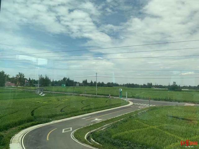 最聪明的稻田什么样?2小时内的天气预报准确到方圆1公里