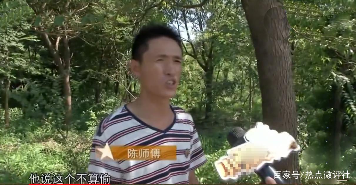 """<b>无助的瓜农,28个大棚""""万斤西瓜""""被一扫光,新埭民警:不算偷!</b>"""