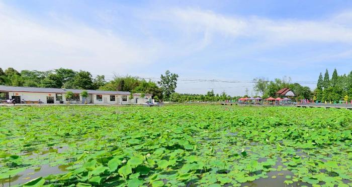 成都发展最穷的3个县,一个是成都的南大门,一个是大邑县