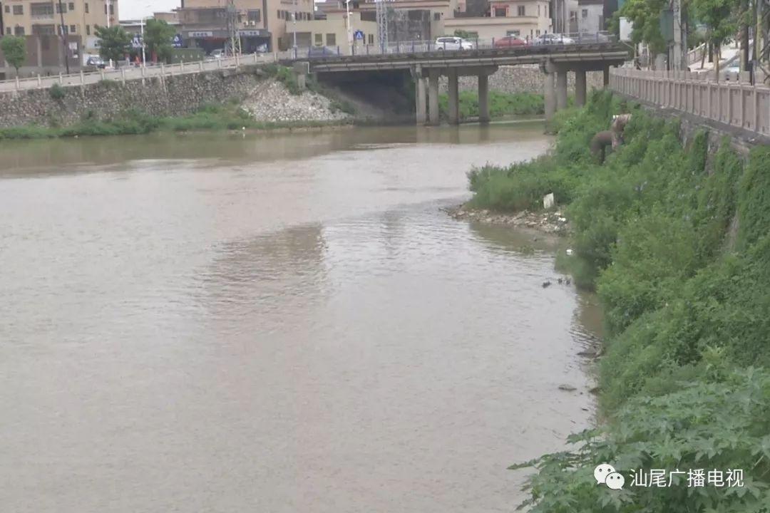 陆丰东海共享单车被扔河道,半年损坏100多辆