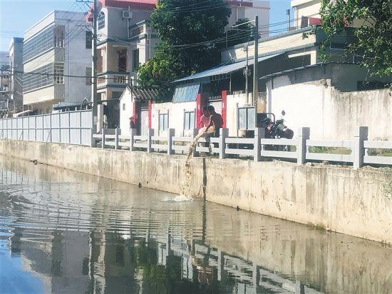 东方八所龙须沟:市民随意倒垃圾 水体散发恶臭味