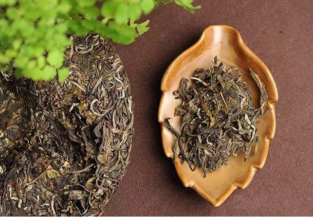 <b>普洱老茶,养胃之王</b>