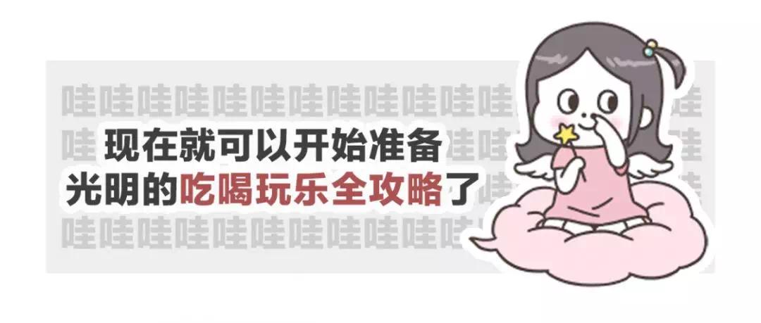深圳地铁6号线首列车已到货!明年年中,光明直达市区不是梦~