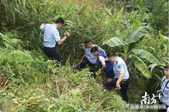 广州番禺15年前一大学生误入传销组织被杀害分尸,嫌犯终于落网