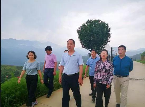省政府验收组对山阳县创建省
