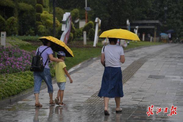 """台风""""利奇马""""送阵雨,武汉周末7级大风略降温"""