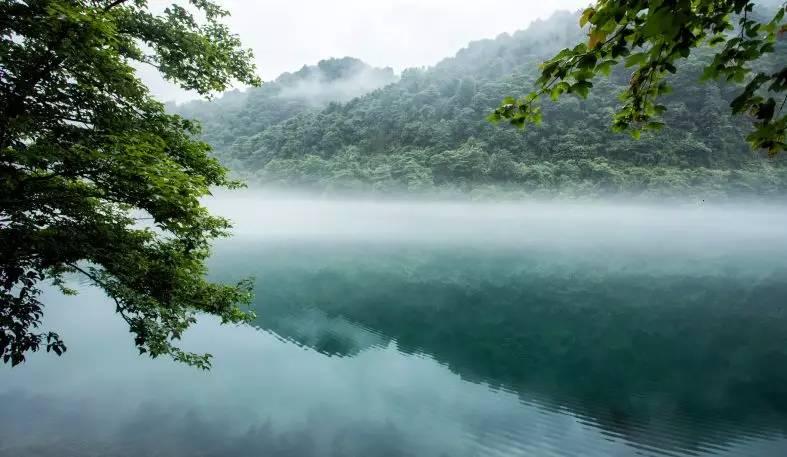 """湖南有""""奇江"""",烟雾缭绕似""""蓬莱仙境"""",定格成唯美水墨画"""