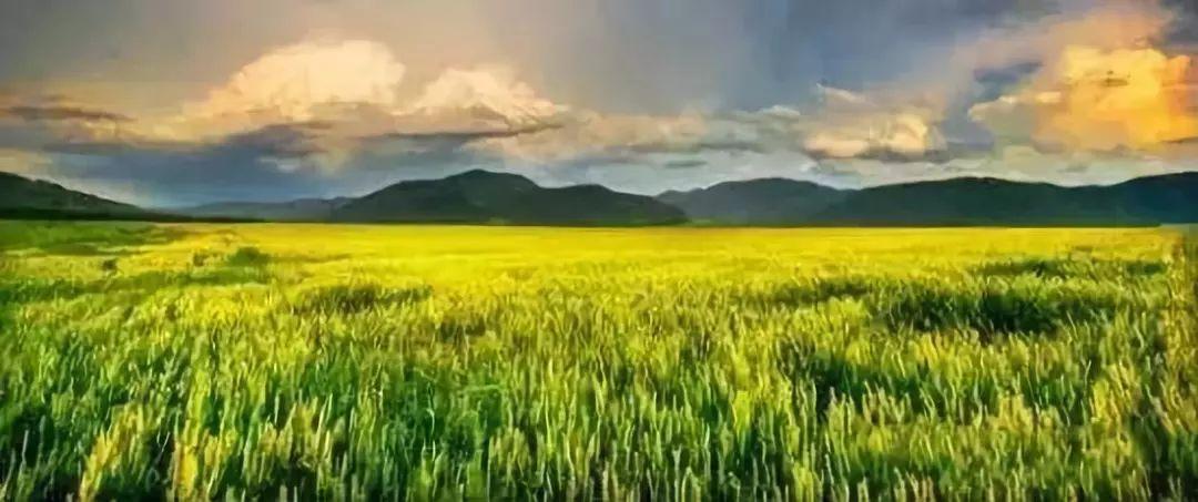 中共中央国务院:土地政策升级!养老、康养产业迎来春天
