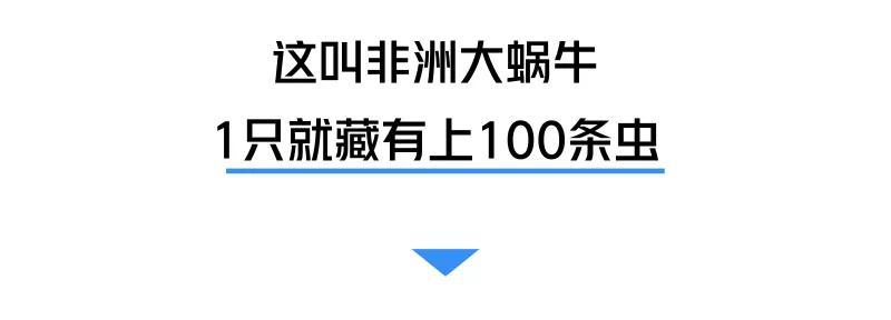 """中国核工业创建六十五周年综述:大国底气从""""核""""来"""