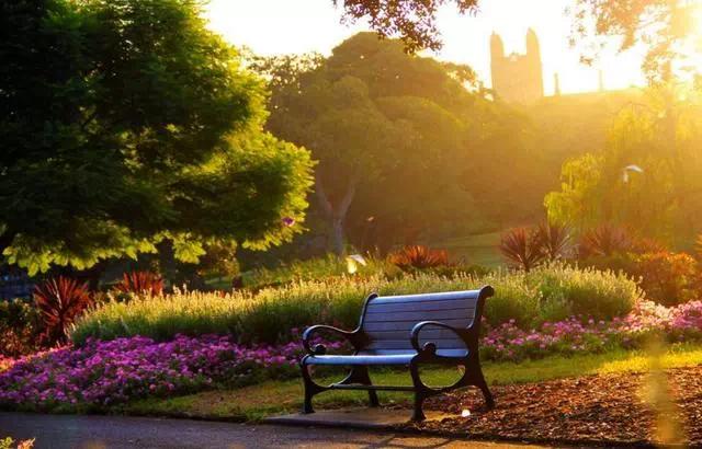 """【黄山·圣天地】左右逢""""园"""",把时间留在公园的长椅上"""