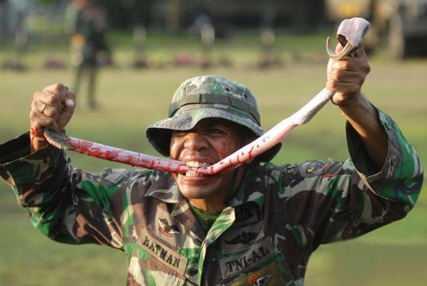 不是日本也不是印度,这个亚洲国家有90万精锐部队,却低调的过分