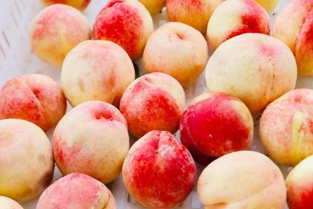 常吃桃子好处多,可黄桃、水蜜桃、蟠桃,糖尿病患者应该怎么选?
