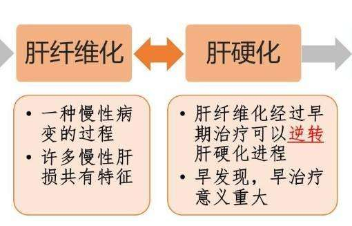 转氨酶已明显异常,乙肝小三阳,需认识定期观察与治疗并不绝对 ikangji.com