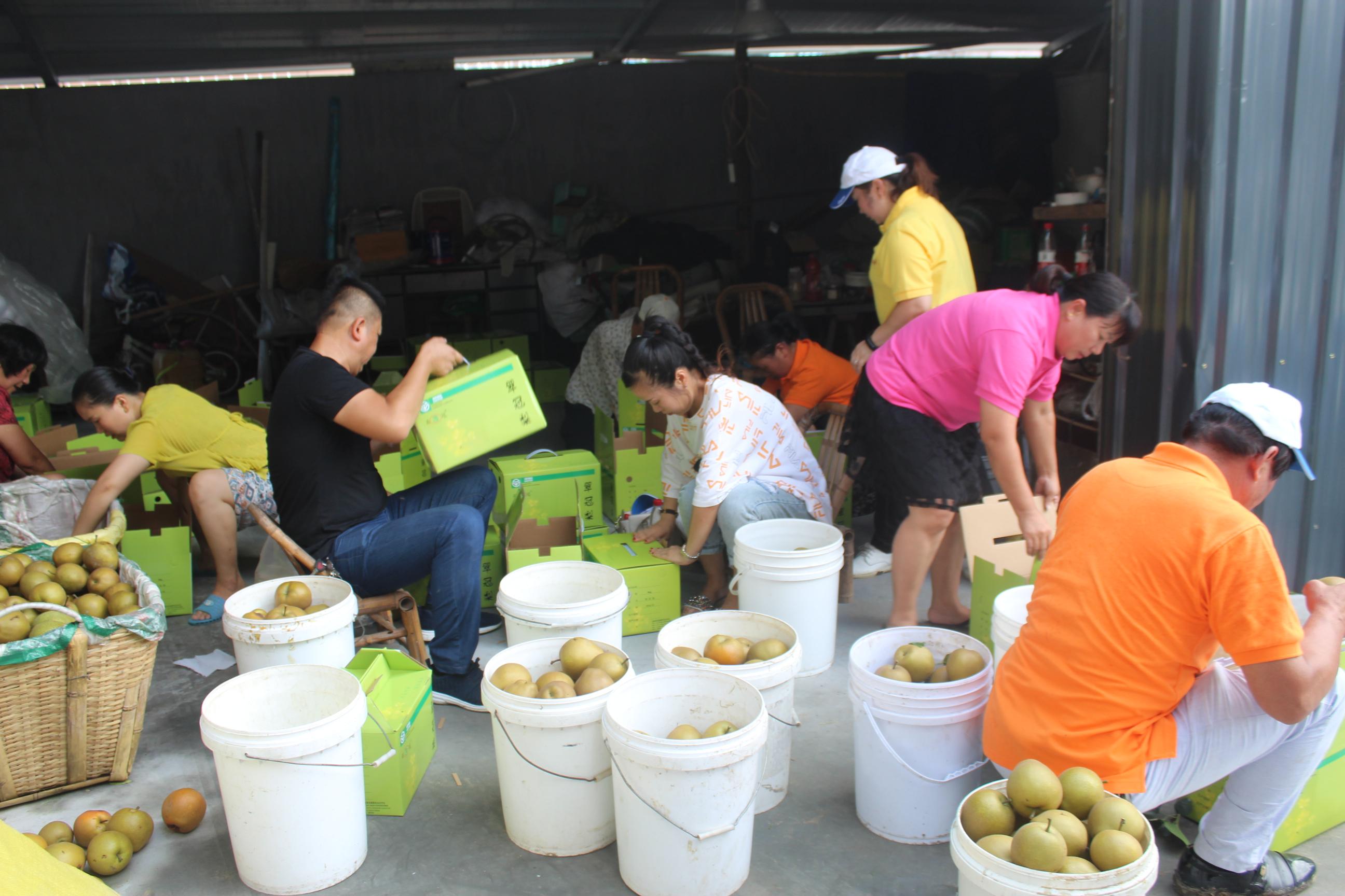 """亚飞公益基金启动""""利奇马""""台风灾区救助"""
