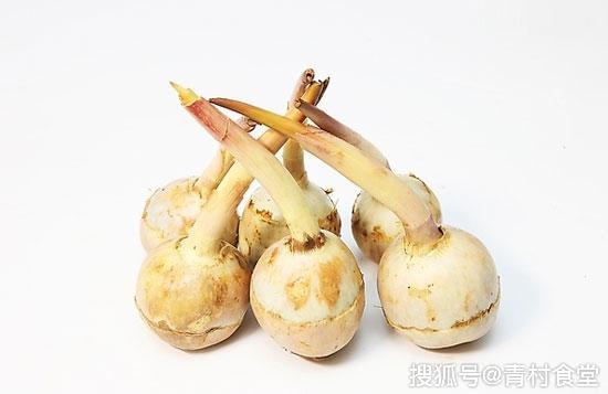 慈姑是什么蔬菜 [慈姑!这种蔬菜你吃过吗?虽然营养丰富,但不宜多食哦]