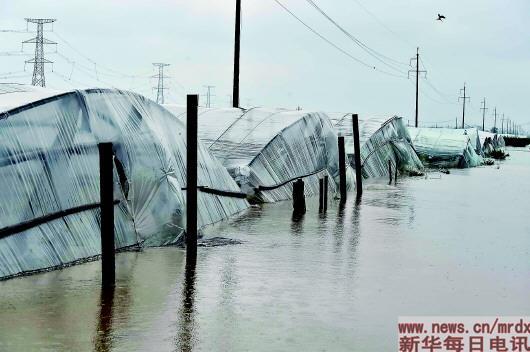 降雨创历史纪录之下寿光受灾水平远低于去年