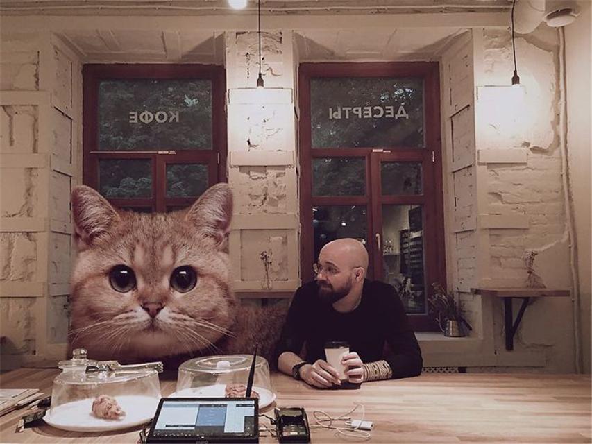 """原创 俄罗斯艺术家创作""""3米巨猫""""照片,简直是吸猫族的极致享受"""
